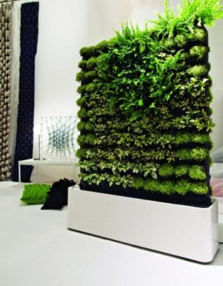 Green live wall